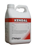 Стимулятор роста растений Кендал (Kendal) 5л Valagro