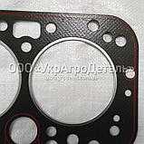 Прокладка под головку ЮМЗ (ГБЦ) Д65-02-С12-В, фото 2