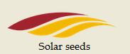 Насіння соняшнику під евролайтінг Корнес КЛ (Солар Сідс ™) Solar Seeds (Франція)