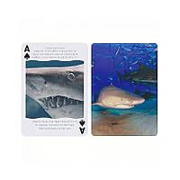 Покерные карты Bicycle Shark USPCC (krut_0669)