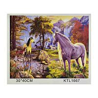 Картина по номерам KTL 1667 (30) в коробке 40х30