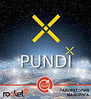 Криптовалюта Pundi X (NPXS)