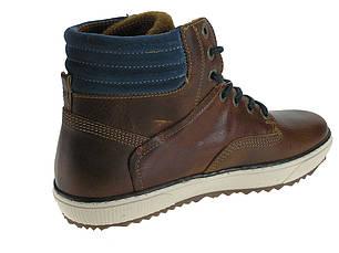 Ботинки мужские кожаные Beppi 2165040, фото 2