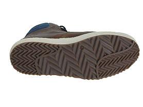 Ботинки мужские кожаные Beppi 2165040, фото 3