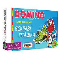 Настольная Игра Домино Яркие птички, Стратег STRATEG 675, 009769