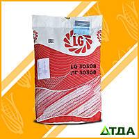 Насіння кукурудзи ЛГ 30308 ФАО 310
