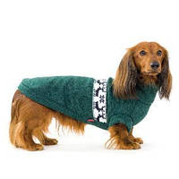 Свитер для таксы Pet Fashion Крисс М, длина спины 45 см  (зеленый и темно-серо-голубой)