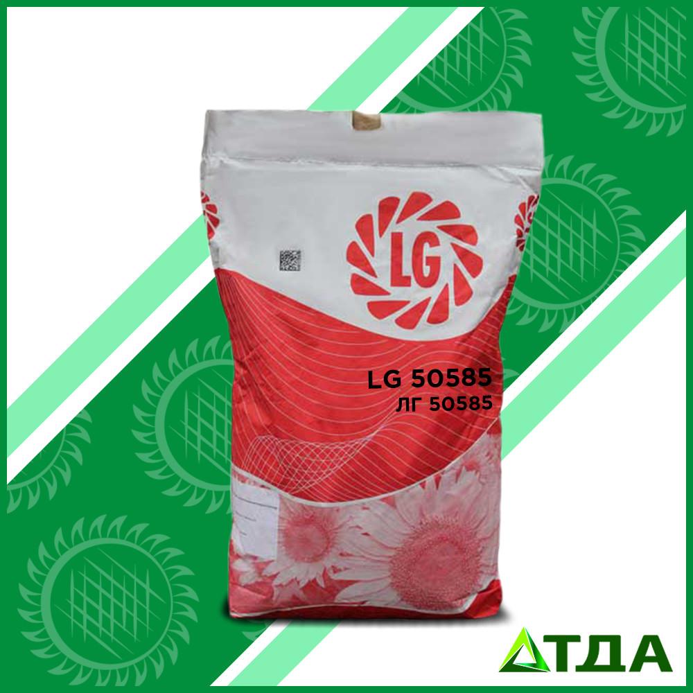 Семена подсолнечника  ЛГ 50585