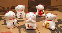 Кошечки Манэки-нэко (набор 5 штук)