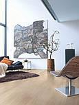 Ламінат Quick step колекція Eligna декор Світло-сірого лакового дуба, фото 3