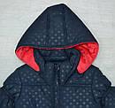 Куртка зимняя для девочки темно-синяя (QuadriFoglio, Польша), фото 2