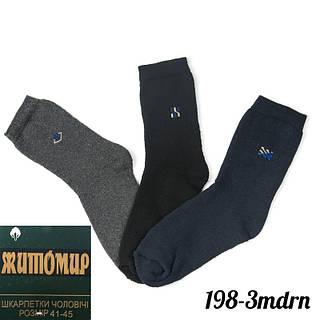 Носки мужские махровые Житомир (Украина) 198-3Mdrn (12 ед. в упаковке)