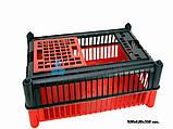 Ящик для перевезення птиці (PRIM), фото 2
