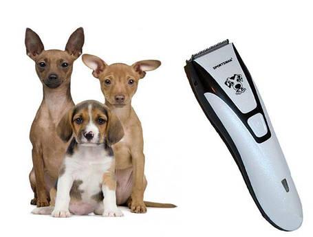 Беспроводная машинка с насадками для стрижки животных | Триммер для домашних питомцев  SM-600A, фото 2