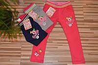 Трикотажные спортивные  брюки для девочек оптом 4-12 лет
