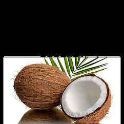 Ароматизатор  Coconut TPA (Кокос)