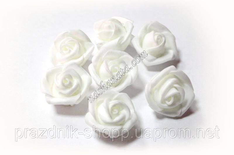 Роза белая, латексная.