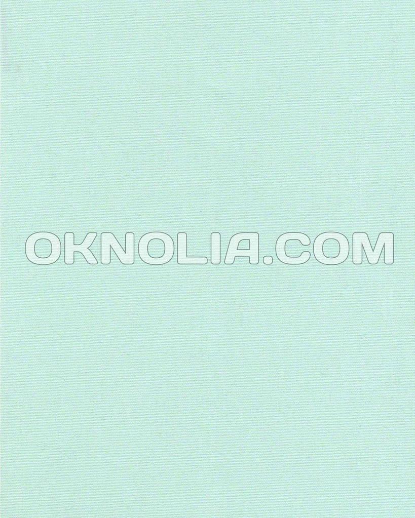Тканевые ролеты Ара 1008 светло-зеленый, 50*170 см