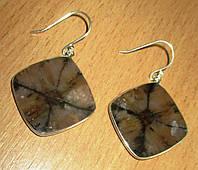 Шикарные серебряные серьги с хиастолитом (андалузитом) , от студии LadyStyle.Biz, фото 1