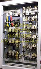 ТСАЗ-250 (ИРАК.656.231.006-02) — панели подъема, фото 2