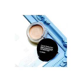 Кремовый консилер The Saem Cover Perfection Pot Concealer 02.Rich Beige 4г (8806164118108)