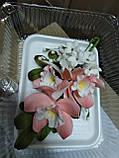 Букет орхідеї великої з листками і дзвіночками L 250, фото 4