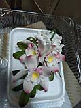 Букет орхідеї великої з листками і дзвіночками L 250, фото 6