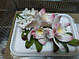 Букет орхідеї великої з листками і дзвіночками L 250, фото 7