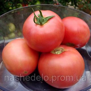 Семена томата розового VP-2 F1 1000 семян Vilmorin