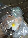 Орхідея велика d-90 (уп. 3 шт), фото 4
