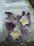 Орхідея велика d-90 (уп. 3 шт), фото 7