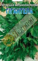 Петрушка (Ароматная, Гигантела, Кучерявая, Богатырь, Карнавал), фото 1