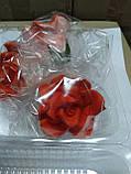 Троянди великі d-65, фото 8