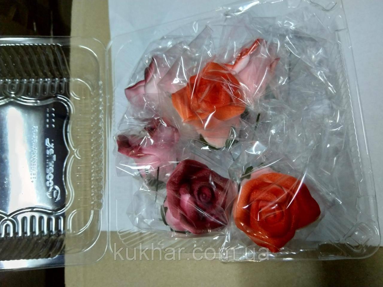 Троянди середні d-55
