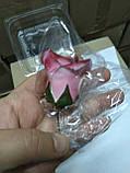 Троянди середні d-55, фото 6