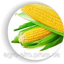 Сахарная кукуруза Багратион F1 4000шт