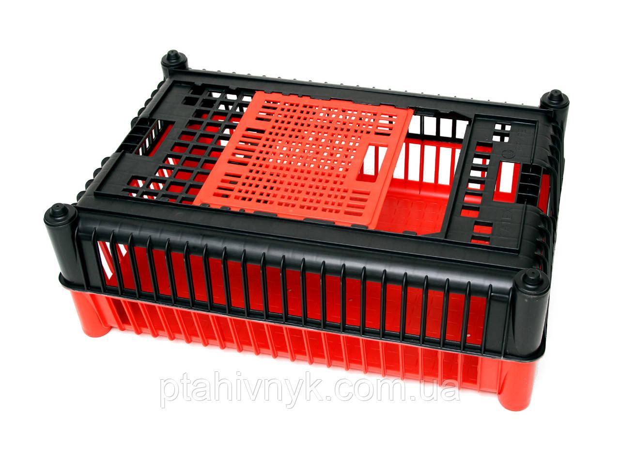 Ящик для перевезення птиці (PRIM)