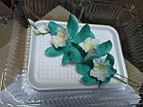Гілка орхідеї великої з бутонами L 250, фото 8
