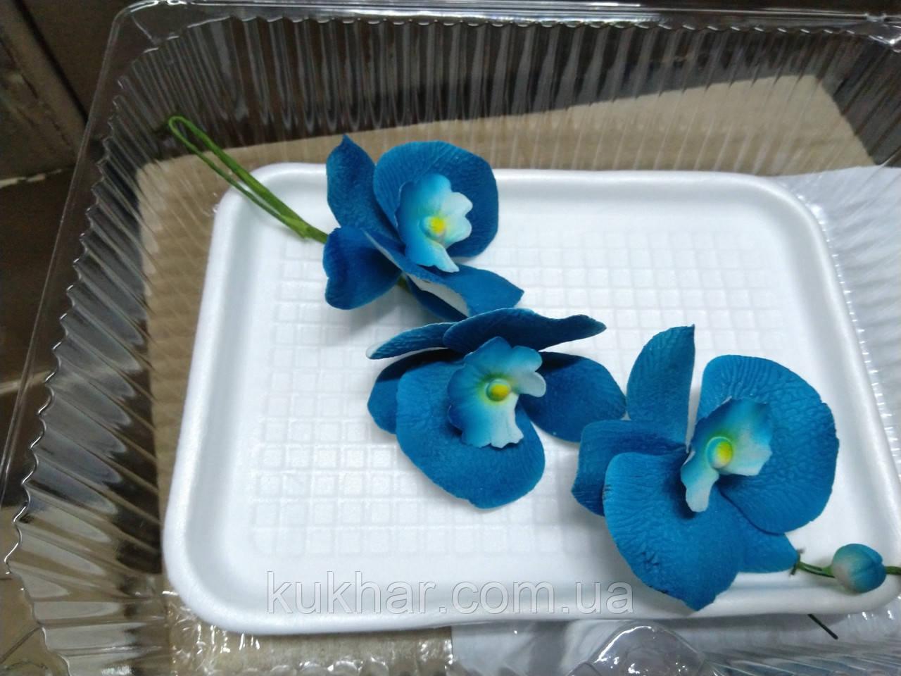 Гілка орхідеї малої з бутонами L 250