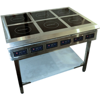 Ремонт и ТО индукционных плит