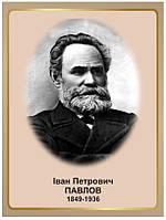 Стенд Портрет біолога Івана Петровича Павлова