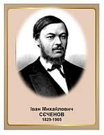 Стенд Портрет фізіолога Івана Михайловича Сєченова