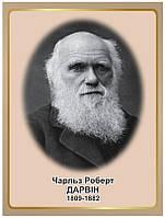 Стенд Портрет науковця Чарльза Роберта Дарвіна
