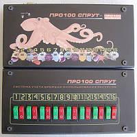 """Компьютерная система учета для бильярда """"Про100 Спрут"""""""