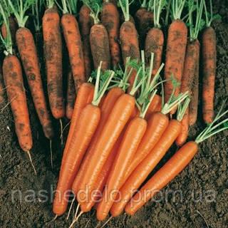 Семена моркови Сопрано F1 100 000 семян Vilmorin