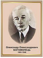 Стенд Портрет патофізіолога О.О.Богомольця