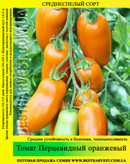 Насіння томату «Перцевідние» помаранчевий 50 г