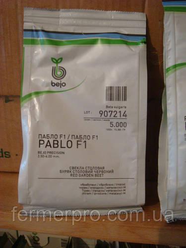 Свекла Пабло F1  50000 семян Bejo