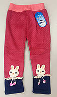 Тёплые штанишки для девочки ТМ Золото!!, фото 1