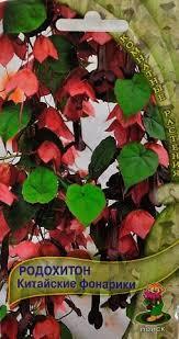 Родохитон Китайские Фонарики, семена